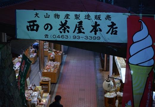 大山神社 (447)_R
