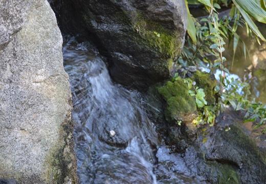 洗足池 (123)_R