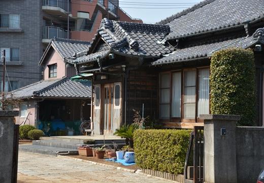 舎人・西新井大師 (74)_R