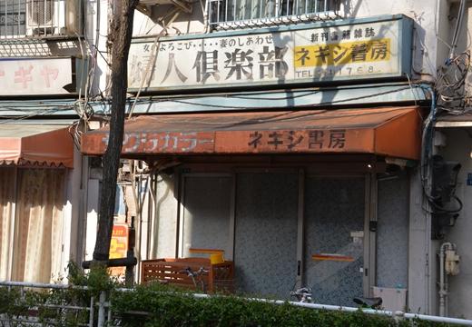 根岸・入谷 (582)_R