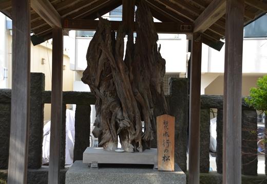根岸・入谷 (423)_R
