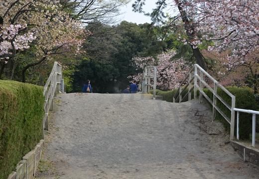 経堂100 (198)_R