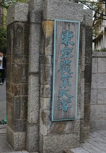 経堂100 (272)_R