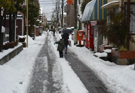 雪の谷中 (20)_R