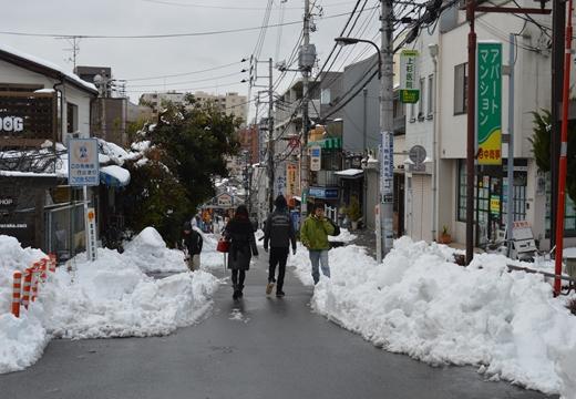 雪の谷中 (70)_R