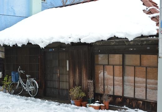 雪の谷中 (133)_R