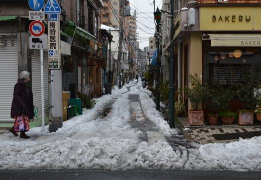 雪の谷中 (156)_R