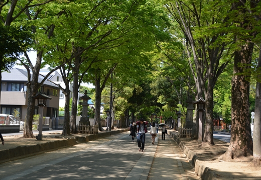 盆栽町10 (42)_R
