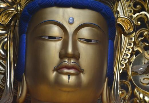 富士神社&吉祥寺 (177)_R