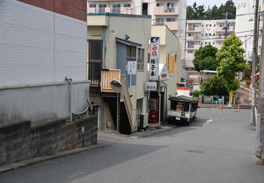 鶴川 (145)_R