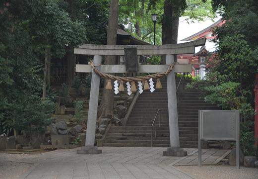 豪徳寺 (508)_R