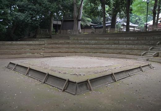 豪徳寺 (477)_R