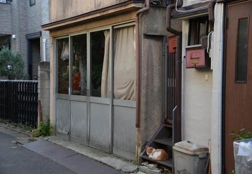 長崎・椎名 (152)_R