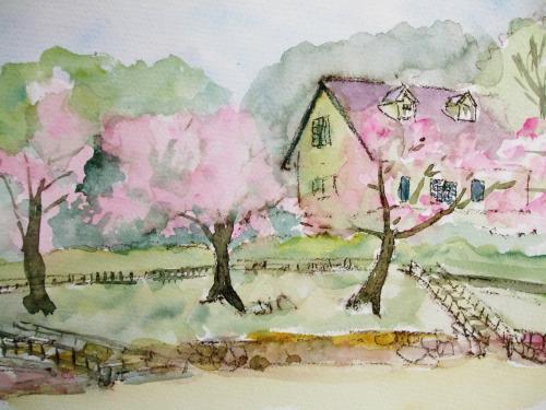 小路 桜2