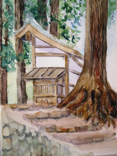 高野山 大杉