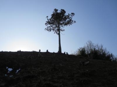 荻野、健康こどもの森の近くで。