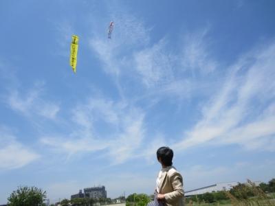 大凧を見てる私