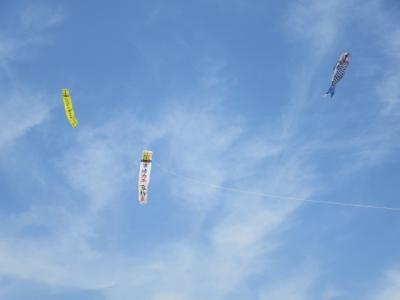 大凧と鯉のぼりと大凧