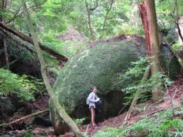 山道で見かけた大石