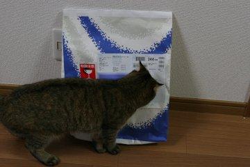 suzu670.jpg