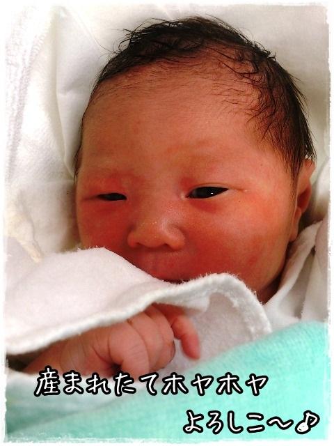 おぱ美っ子誕生