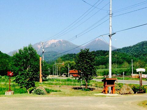 クマゲラ窓からの景色