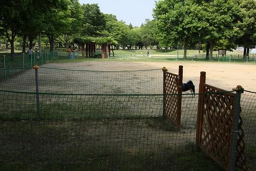 蘇南公園DR01
