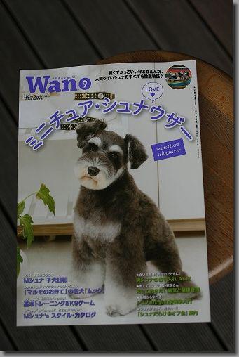 雑誌Wan 002