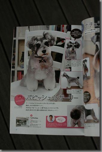 雑誌Wan 003