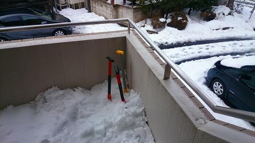 大雪2DSC_0102