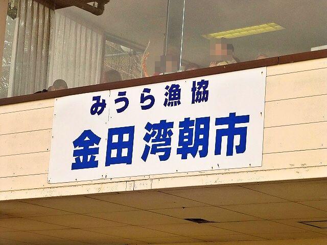 金田漁港1加工