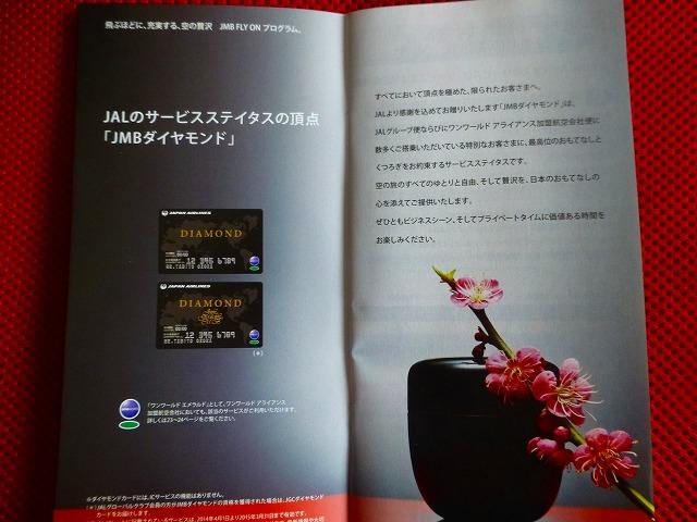 P10409801.jpg