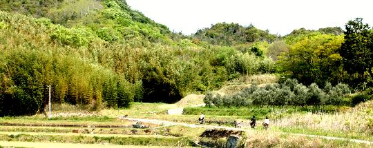 しまたび豊島3