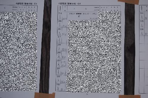 20140406 (10)