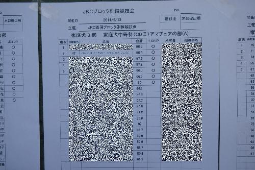 20140518 (11)