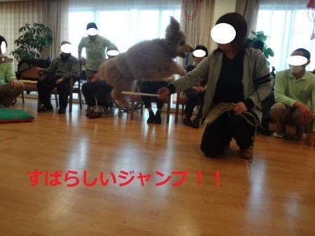 18_20140308023931de9.jpg