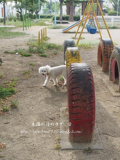タイヤの公園