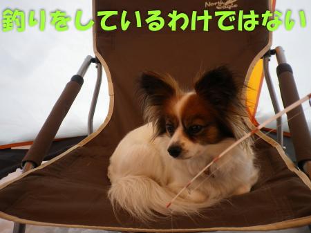 2014-02-24-1+040_convert_20140228124545.jpg