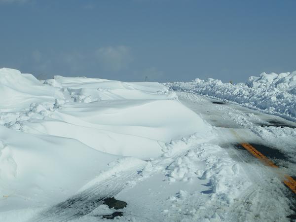 積雪観測隊4