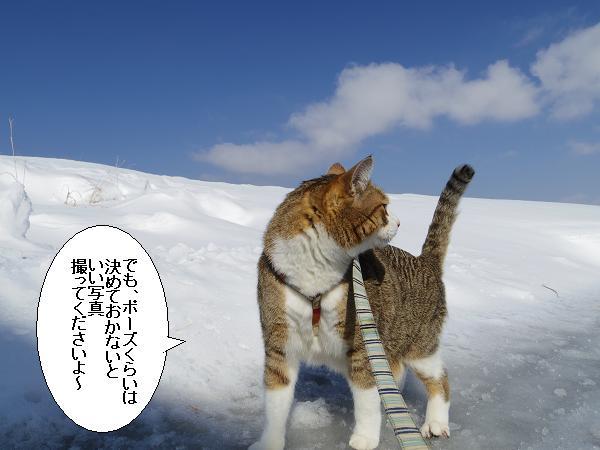 積雪観測隊7