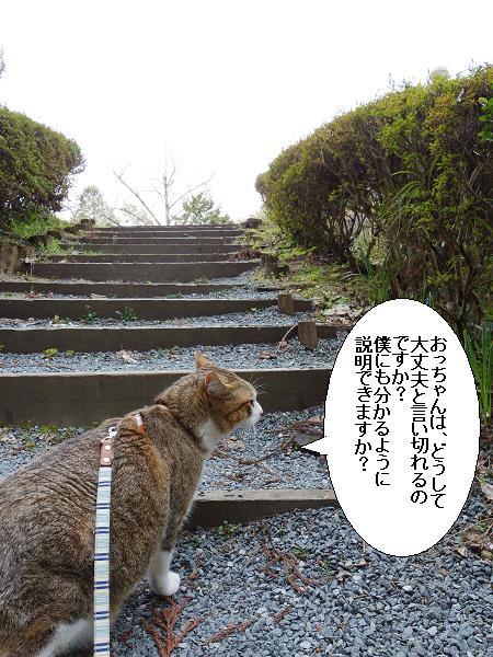 二俣橋10