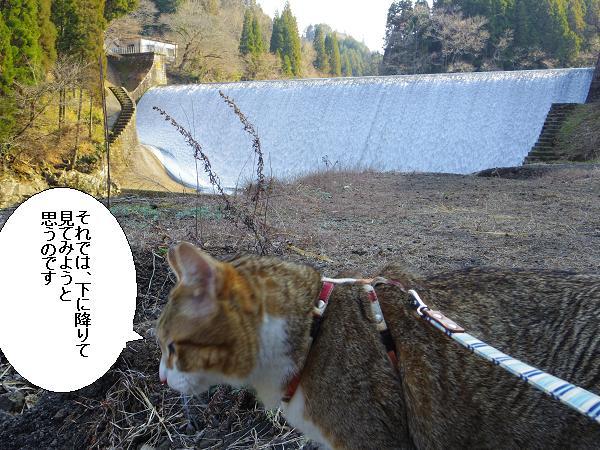 白水ダム3