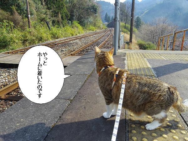大行司駅5