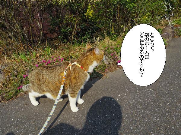大行司駅3