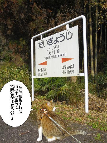 大行司駅8