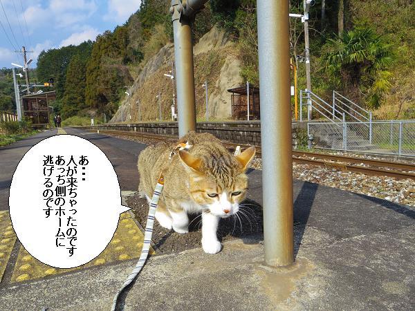 大行司駅7