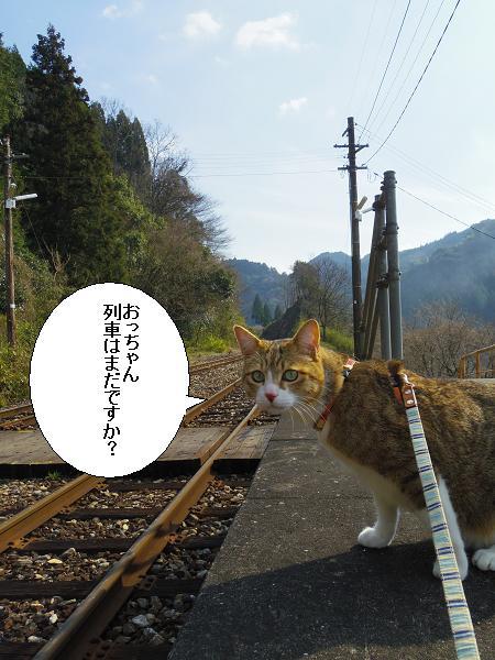 大行司駅6