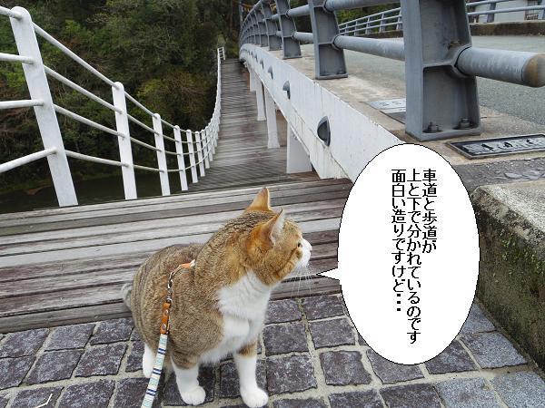 九州のヘソ6