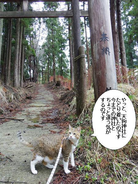 天狗神社6