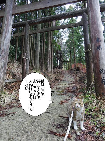 天狗神社11